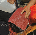http://www.ondrias.sk/images/waterboarding.png